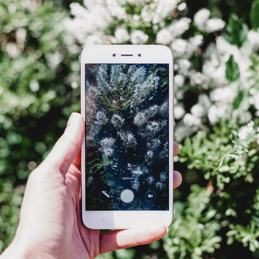 Top Xiaomi Smartphone: Let Us Discuss The Top Xiaomi Phones Of 2019